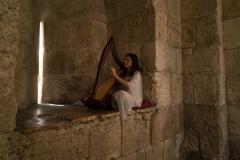 Harpist At Jaffa Gate
