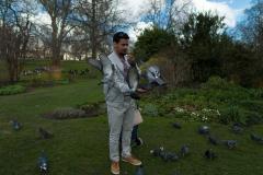 Birds In The Park