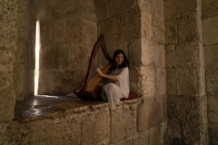 Harp Player At Jaffa Gate, Old City Jerusalem